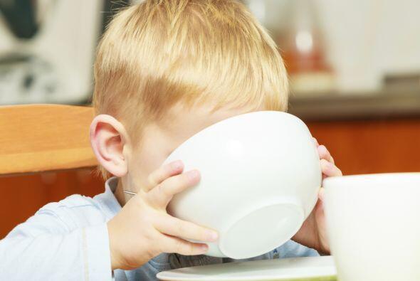 Los lácteos son un aporte básico en su nutrición, por que aportan  nutri...