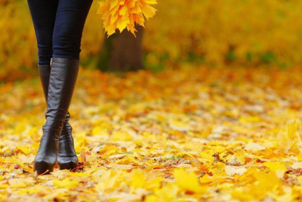 Hay botas de otoño hechas para caminar, otras para presumir y otras para...