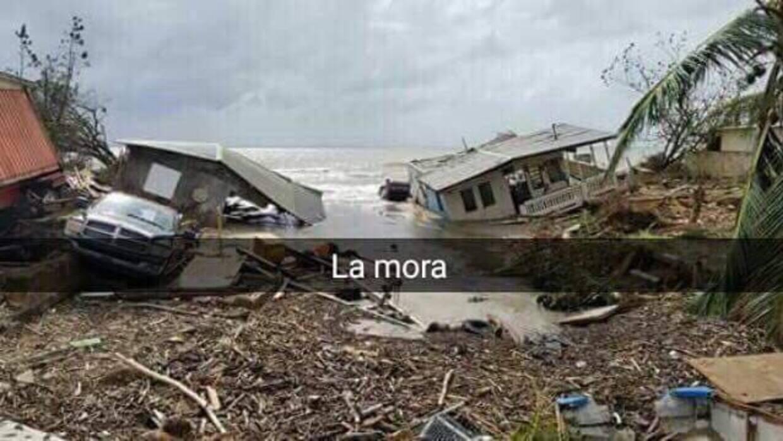 La Mora, en Mayagüez.