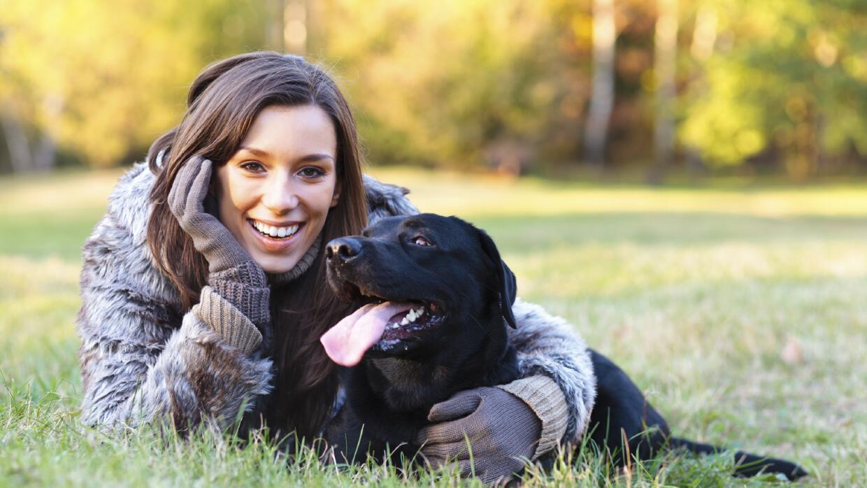 Los síntomas de alergia en un perro son fácilmente identificables.