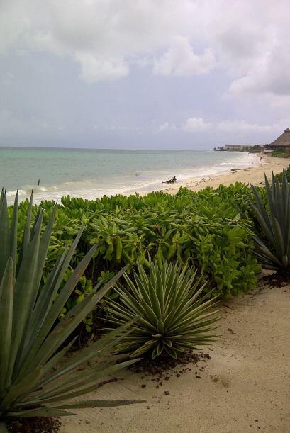 Las paradisiacas playas de Cancún fueron el marco perfecto para l...