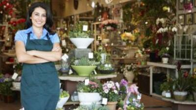 Si todo marcha bien en tu negocio, podrás saber que es momento de expand...