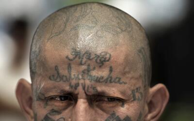 Los tatuajes dentro de las pandillas de orígen salvadoreño...