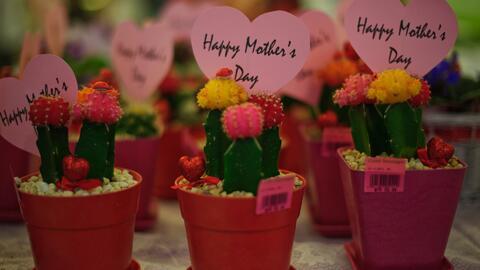 La novena fiesta anual del día de la madre de crianza se celebra a lo gr...