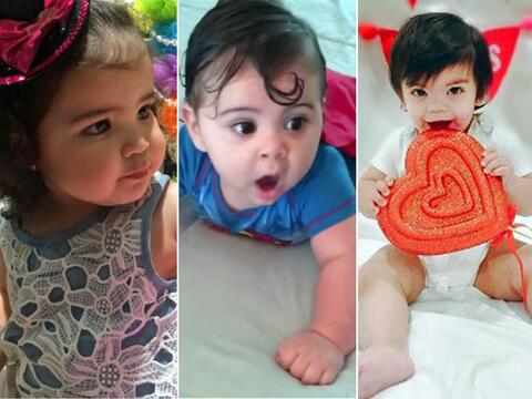 peque babies talentos univision