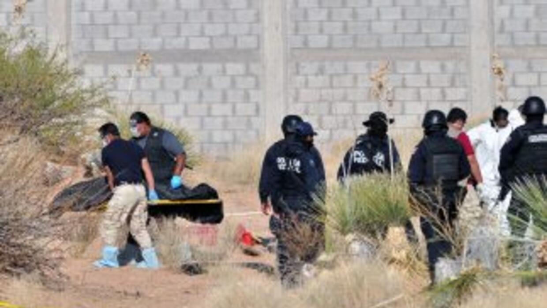 La policía de Torreón localizó el sábado 10 cuerpos decapitados, siete h...