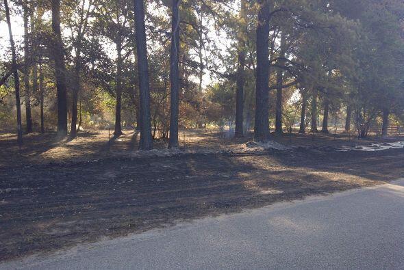 Se estima que unos 7,500 acres de tierra fueron arrasados por las llamas.