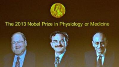 Los estadounidenses James E. Rothman y Randy W. Schekman y el alemán Tho...