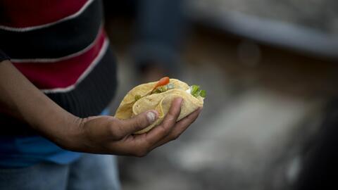 Científicos habrían comprobado los beneficios de hacer la dieta del taco