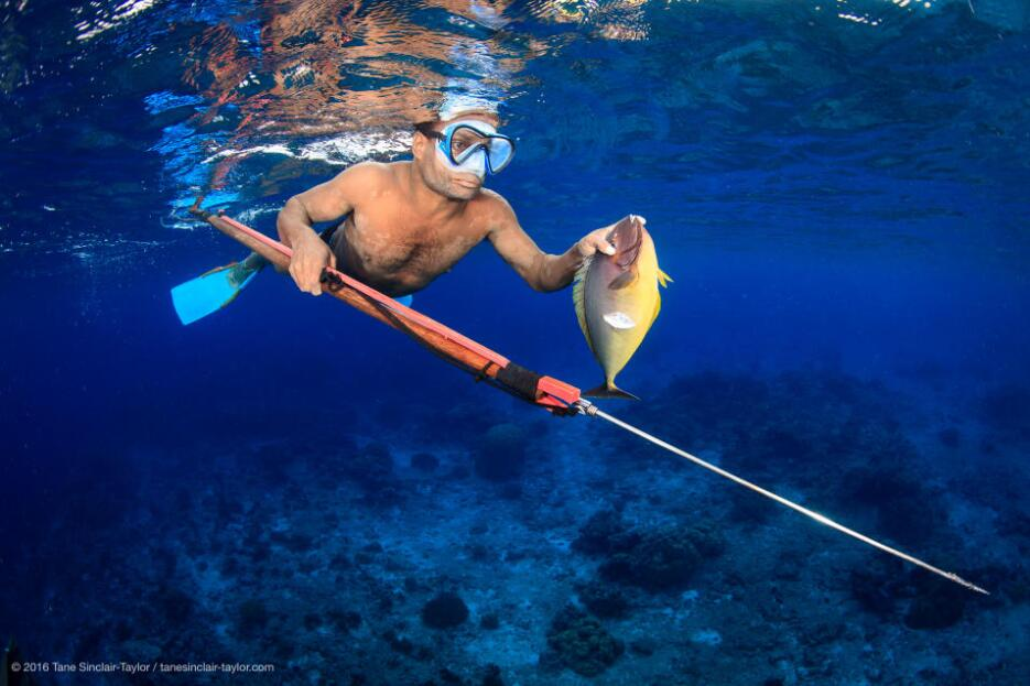 Local fishermen play a vital role in the proper management of reefs, bec...