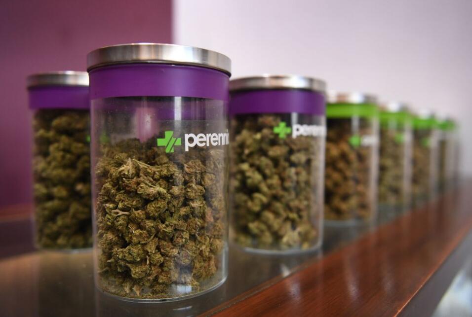 Marihuana en California