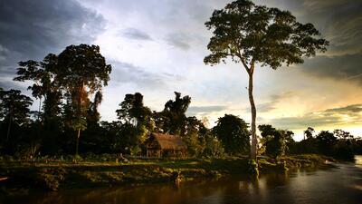 Leyendas, paisajes, diversidad y fauna: Así es la majestuosa cuenca del Amazonas