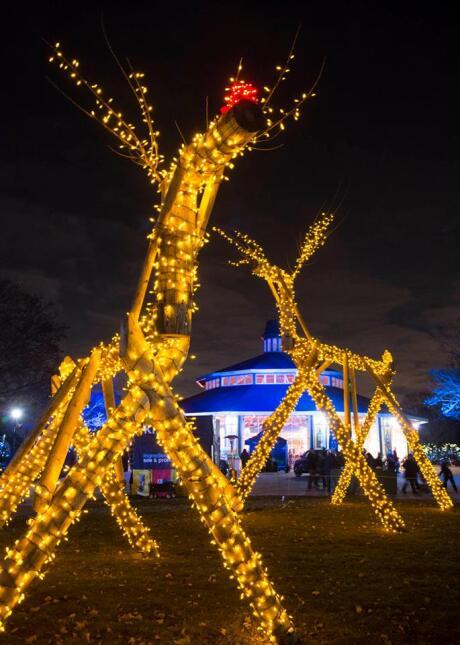 Luces de Navidad en el Brookfield Zoo
