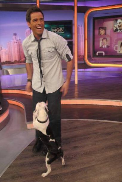 Además tiene muy bien entrenado a su perrito, para que lo acompañe en su...