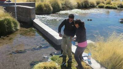 ¿Bacterias para limpiar el agua contaminada de arsénico? Científicos chilenos las usaron y resultó