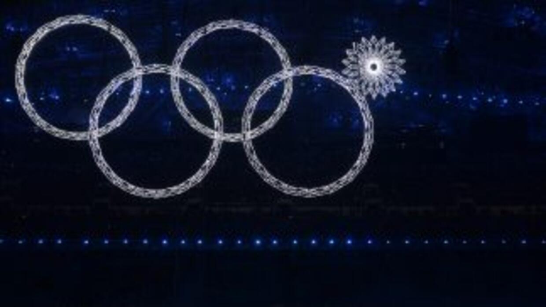 Fueron inaugurados los Juegos Olímpicos de Invierno en Sochi.