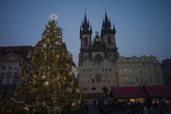 En Praga, República Checa un árbol natural adorna la plaza en el centro...
