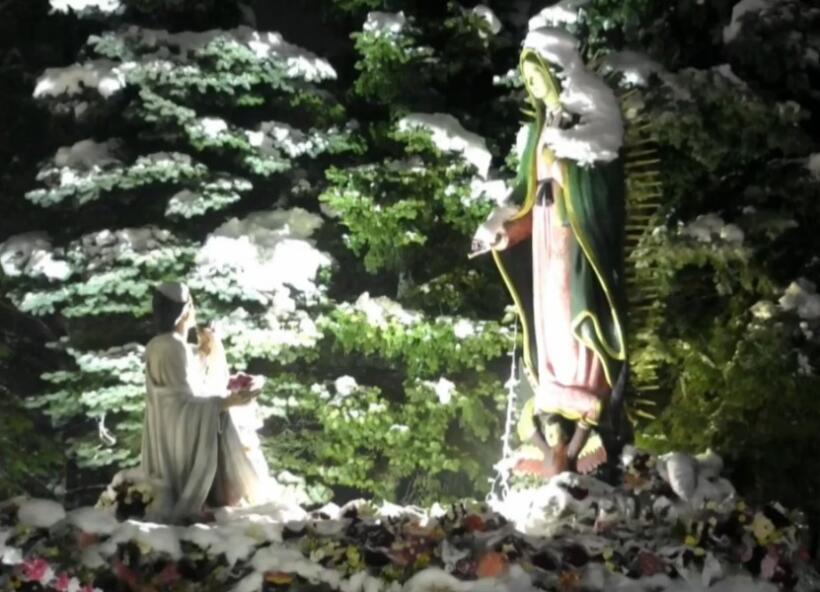Imágenes de las mañanitas a la Virgen de Guadalupe desde Des Plaines