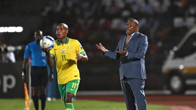 El seleccionador de Sudáfrica es despedido por insultar a la directiva