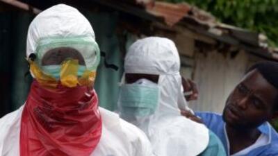 Científicos trabajan por un antídoto para el ébola