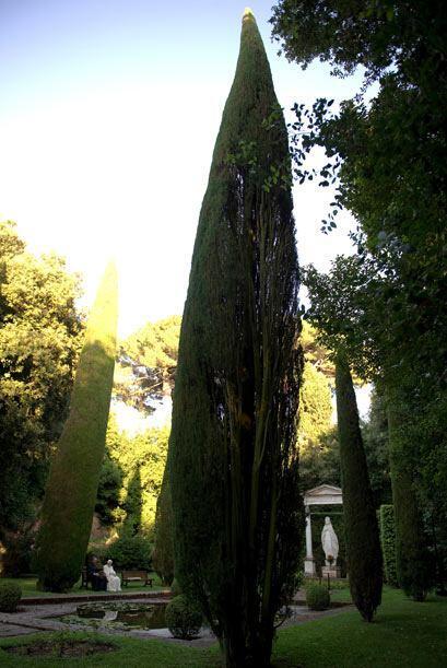 Lleno de jardines, este es el lugar perfecto para que el Papa se tome un...