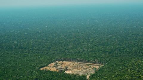 Vista aérea de la deforestación en la región occide...