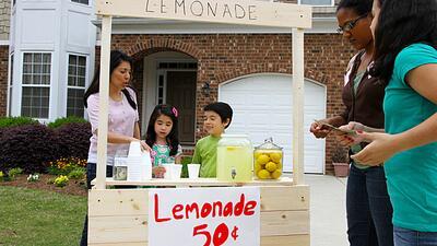A kids lemonade stand business.