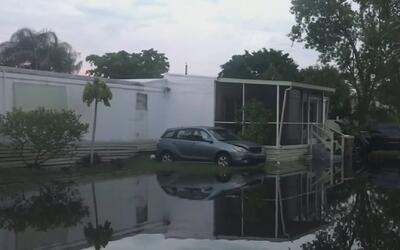 Residentes de Broward enfrentan varias emergencias por los efectos de la...