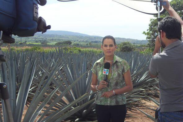 Septiembre del 2008, Ahtziri Cardenas en Tequila, Jalisco previo al bice...