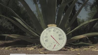 ¡Alerta por calor extremo en el Valle!