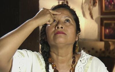 """La """"mujer-medicina"""", una curandera que encuentra sus medicamentos en la..."""