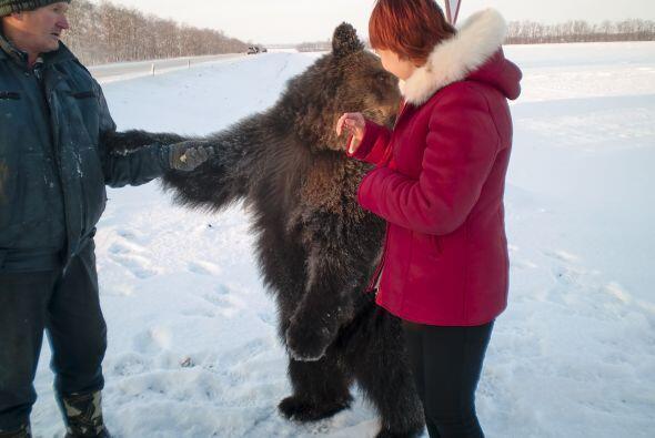 Las personas se acercaban al oso y su dueño para acariciarlo.