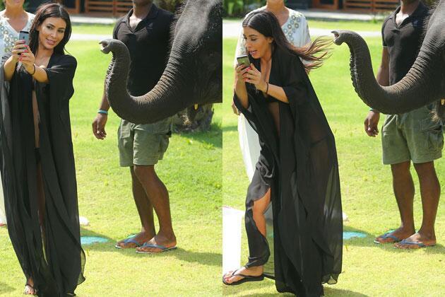 Kim Kardashian atacada por elefante
