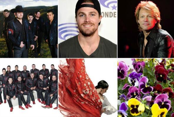 Collage de fotos