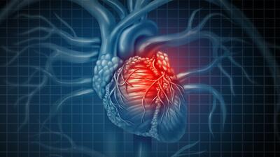 90% de quienes sufren un paro cardíaco mueren antes de llegar al hospital: con esta técnica básica puedes salvar vidas