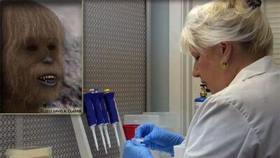 La Dra. Melba Ketchum es quien está develando el ADN del Sasquatch. FOTO...