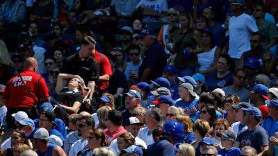 Fan herida juego Cubs