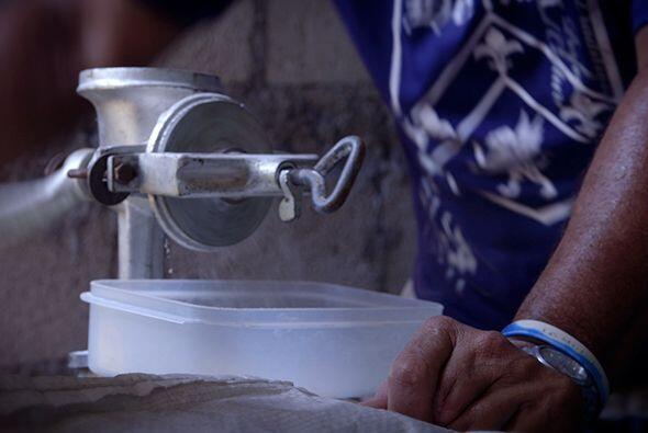 El proceso implica colocarlo en agua y cloro por varios días hasta que s...