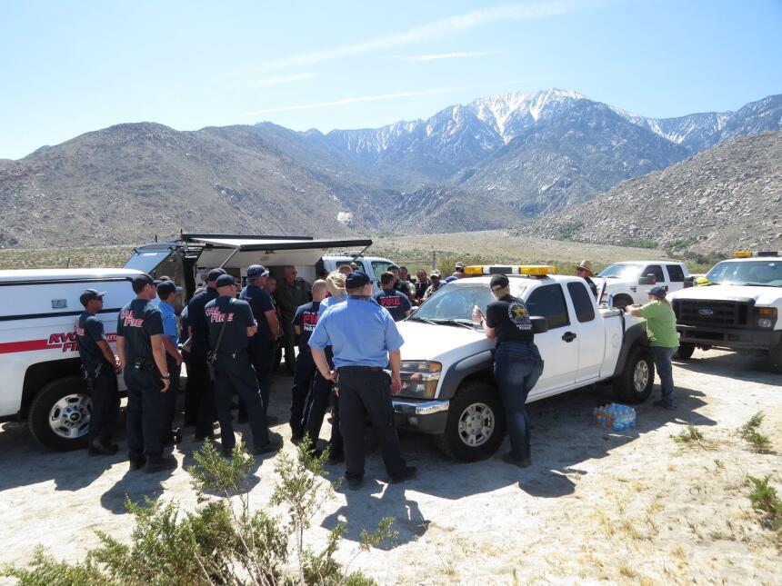 Los bomberos planearon la estrategia para rescatar al equino.