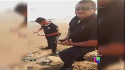 Policías mexicanos fueron sorprendidos cuando tomaban huevos de tortuga