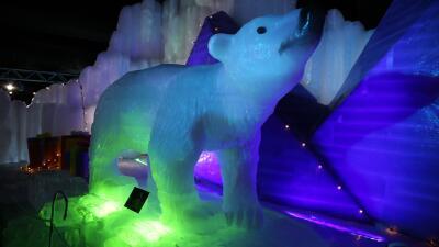 Así se ve este año la exhibición de esculturas de hielo del parque Moody Gardens en Galveston