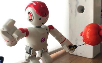 El Videíto: Este robot son capaces de herir a un humano