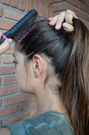 Arma la coleta. Ayúdate con un cepillo para reunir todo el cabell...