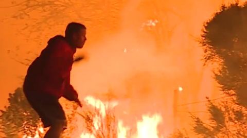 Man risks own life to save an animal in California wildfire
