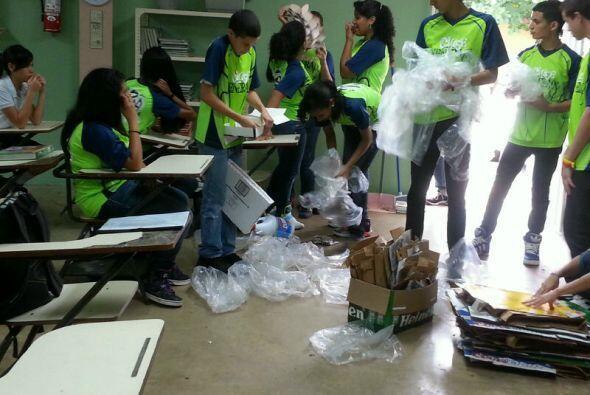 Las escuelas que participaron fueron la Antonio Rivera, José M. Torres,...