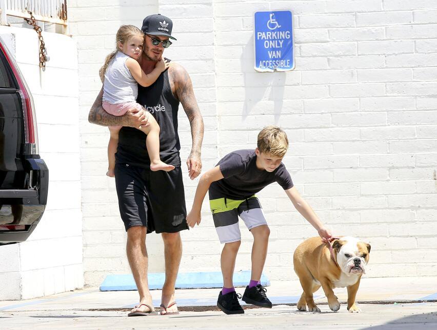 La nueva hija de David Beckham