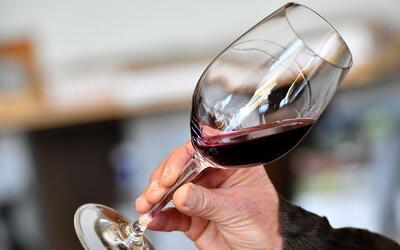 Brindar una vez al día con una copa de vino tinto podría ser beneficioso...