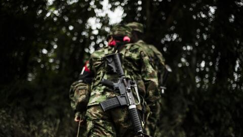 In March the Colombian government and the National Liberation Army (ELN)...