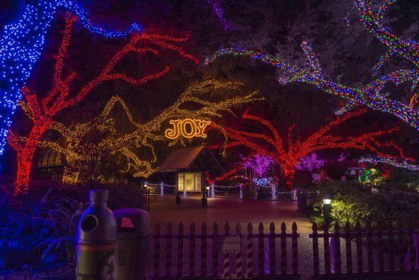 La exhibición Houston Zoo Lights ha roto récords de visita...