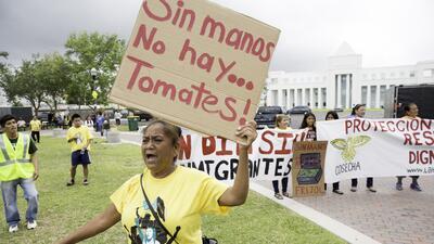 """""""Sin manos no hay tomates"""": las razones de los trabajadores para protestar el 1 de mayo (FOTOS)"""